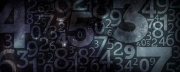 Numeri Palazzo delle Esposizioni